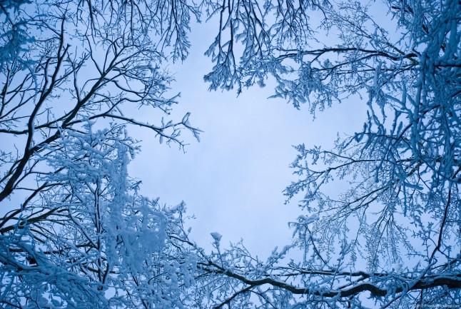 blue-snow-646x433
